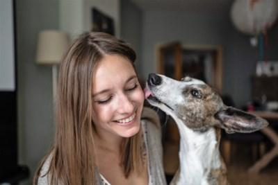 FLOC Rescue vangt huisdieren op tijdens coronacrisis