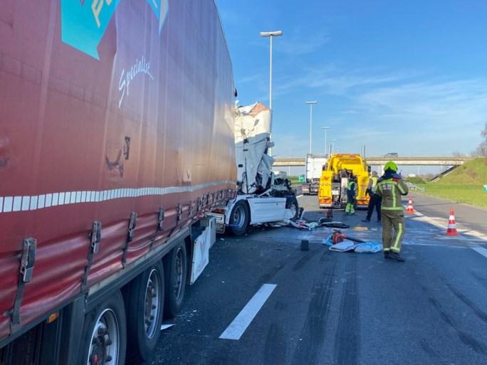 Vrachtwagen rijdt in op file aan Nederlandse grens, twee rijstroken E19 versperd