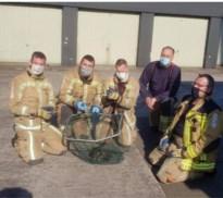 Brandweer redt twaalf kleine eendjes uit riool