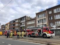 Vier katten komen om bij uitslaande brand op Bredabaan