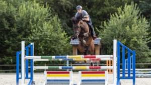 """Antwerps gezin mag na meer dan een week eindelijk naar paard Jacky: """"Politie laat ons nu toch door aan de grens"""""""