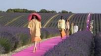 Jacquemus en Alexander McQueen bieden gratis online lessen aan