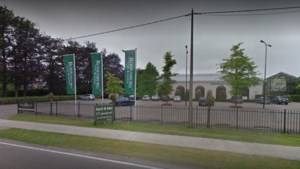 """Tuincentrum Rodenburg in Schoten mag eerst wel, dan toch niet opnieuw open: """"Dit is oneerlijke concurrentie"""""""