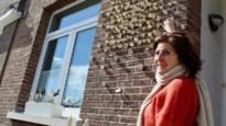 """Kunstenares zet 300 zelfgemaakte vlinders 'op haar kot': """"Boodschap van hoop"""""""
