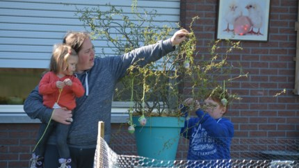 Bewoonster is op zoek naar knutselwerkjes voor paasboom