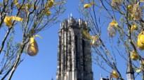 Witte vlag wappert op Sint-Romboutstoren