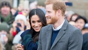 """Biografe prins Harry: """"Ik herken hem niet meer"""""""