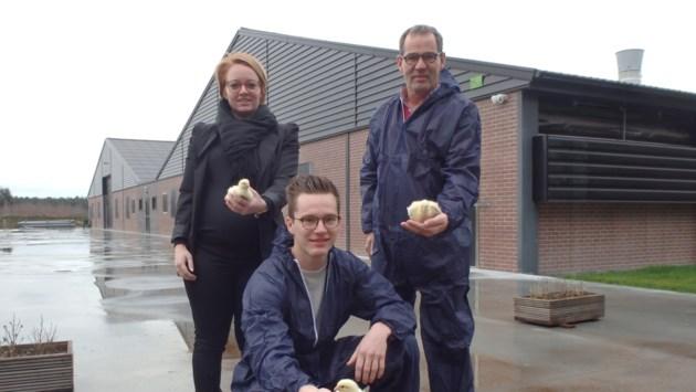 """Minister weigert in beroep vergunning voor kippenstal: """"Bedrijf zit in zak en as"""""""