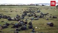 Van Steve Stevaert tot de Falklandoorlog: dit gebeurde er op 2 april in de geschiedenis