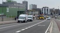 Hond sterft bij botsing op 'Brug van den Azijn'