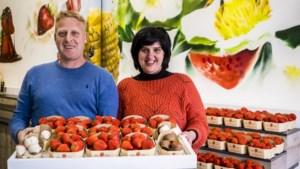 """Aardbeienteler opent winkel in Antwerpse Kammenstraat: """"Meer dan ooit nood aan vitaminen"""""""