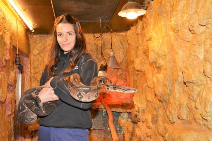 Afdeling Dierenzorg in coronatijd: geen leerlingen, wel duizend dieren om te verzorgen