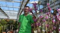 Platgebeld plantencentrum pleit voor snelle heropening tuincentra