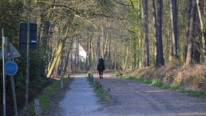 Verwarring troef bij ruiters: buitenritten te paard zijn niet meer toegelaten