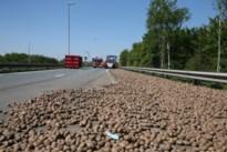 Vrachtwagen verliest lading aardappelen op A12 bij ongeval