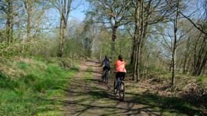 5 wandeltips in Herentals: historische plekken in bos en hei