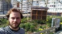 Coronawandeling door Wilrijk: vooruit met de geit!