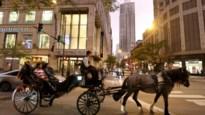Paardenkoetsen verdwijnen uit steeds meer steden