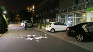 'Ruzie in drugsmilieu' eindigt met messteken: vijftien jaar cel geëist tegen twee broers