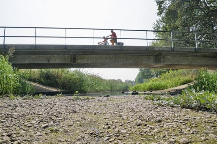 Het wordt weer een hete zomer: experts voorspellen hittegolven nu grondwater zich niet kan herstellen
