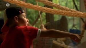 """Zoo na twee maanden opnieuw open: """"Al van 6 uur vanochtend aan het wachten om te mogen gaan"""""""