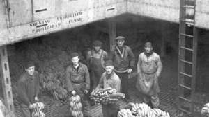 Van bananendozen en europallets tot containers: de revolutie die 'containerisering' heet