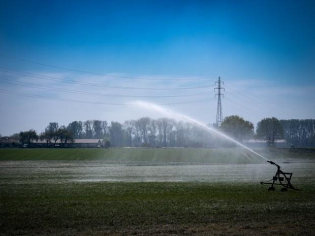 Vlaams-Brabant verbiedt niet-essentieel gebruik leidingwater in 42 gemeenten