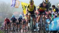 """Tomas Van Den Spiegel, CEO Flanders Classics: """"Sowieso geen Ronde van Vlaanderen met 50.000 man op de Kwaremont"""""""