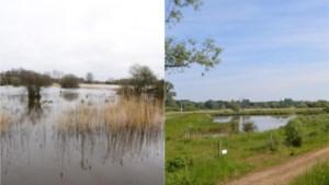 """Zes getuigen zien gevolgen van droogte op terrein: """"Zelfs in 1976 was het voorjaar niet zo droog en heet"""""""