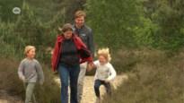 Kalmthoutse Heide kreunt onder de droogte