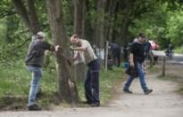 Vandaal beschadigt bomen De Liereman: reddingsactie met houtschijfjes en veenmos