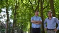 """Bewoners doen ultieme oproep naar gemeentebestuur: """"Kap van 110 bomen niet te verantwoorden"""""""