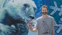 Postkaarten met werk van 'StreetArtwerpenaren' leveren al 5.000 euro op voor zorgsector