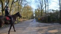 Coronawandeling in Zandhoven: Hier speelde Boudewijn nog als prinsje