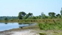 """Grenspark Kalmthoutse Heide lanceert nieuwe website: """"Snel weg vinden naar juiste natuurbeleving"""""""