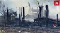 """Gasflessen ontploffen bij brand in Bevel: """"Alles wijst op kwaad opzet"""""""