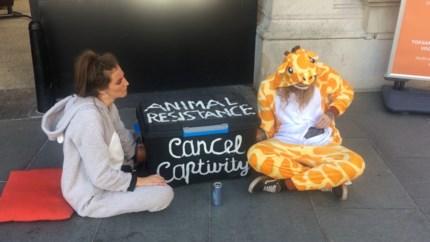 Mensen in dierenpakken protesteren aan Antwerpse Zoo
