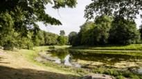 Stad Antwerpen gaat op zoek naar klimaatregisseur