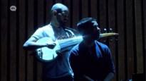 Concerten volgen in een 'loungy' tent vanuit strandstoel in de Singel