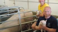 """Hanne (25) stapt in boerenbedrijf van nonkel: """"Trots op de landbouw, net als mijn vriendinnen"""""""
