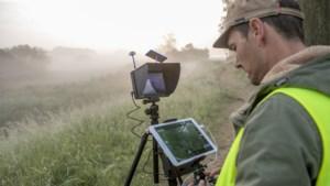 Met een drone op zoek naar zeldzame kwartelkoning