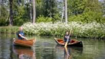 Uniek in België: Freeranger Canoe bouwt houten kano's met de hand