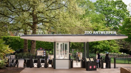 Antwerpse Zoo klaar om twee witte neushoorns te huisvesten