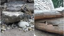 """Kunstwerk in Trollenbos in De Schorre vernield: """"Is dit nu echt nodig?"""""""