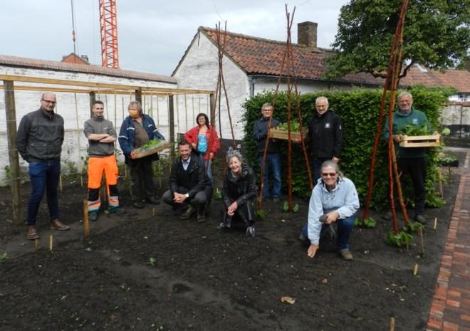 Vrijwilligers leggen authentieke groentetuin aan in begijnhof