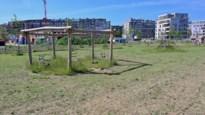 Nieuwbouwwijk lijkt wel gedoemd: 'rijstvelden van Deurne' na droogteperiode herschapen tot zandvlakte