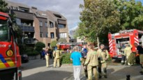 Bewoner overleden bij brand in flat in Turnhout