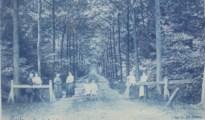 """Grotenhoutbos is meer dan duizend jaar oud: """"Komst van de den veranderde de Kempen voorgoed"""""""