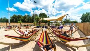 Tomorrowland bouwt samen met Marc Coucke vakantiedorp in Durbuy