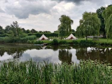 Glampen in de Kempen: luxetipi met zicht op idyllische vijver